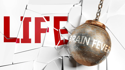Brain fever and life - pictured as a word Brain fever and a wreck ball to symbolize that Brain fever can have bad effect and can destroy life, 3d illustration