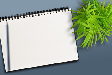 top view of blank spiral notepad and pencil on bluish background with potted plant