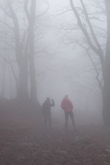 Keuken foto achterwand Grijze traf. silhouettes of people walking through the forest in the fog