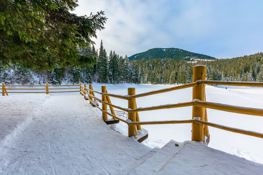 fence on the wooden pier on the lake. wonderful sunny weather in winter. frozen lake synevyr covered with snow. spruce forest on a shore around. idyllic transcarpathia scenery