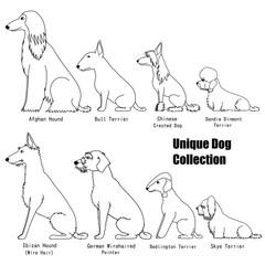 Unique dog breed set