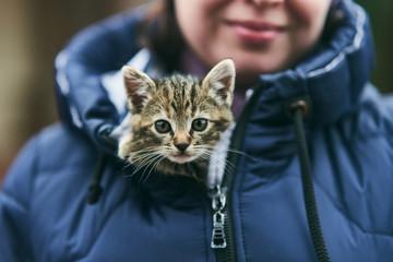 little cute kitten basking in his bosom in a jacket Wall mural