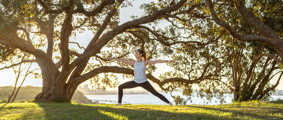 Young woman doing yoga under tree in park Fotobehang