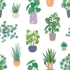 Home plants in ceramic pots vector seamless pattern. Domestic flowers colorful texture. Exotic houseplants in flowerpots color drawing. Creative textile, wallpaper, wrapping paper design.