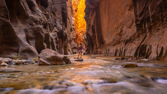 Amazing landscape of canyon in Zion National Park, The Narrow