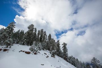 Winter in Cadí Moixeró Nature Park, Pyrenees, Spain