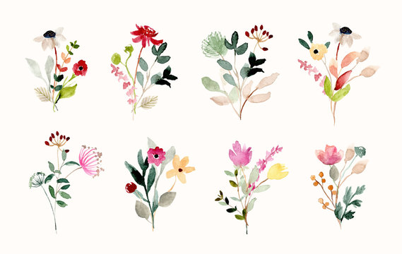 beautiful wild flower bouquet watercolor collection