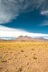Cerro Miniques (Miniques hill) in the Altiplano (high Andean Plateau), Los Flamencos National Reserve, Atacama desert, Antofagasta Region, Chile, South America