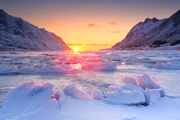 Wall Mural - Frozen fjord in northern Norway in winter at sunrise