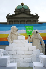 Greenpeace activists dressed as polar bears are seen before members of the Swiss Glaciers Initiative committee hand over boxes with signatures supporting a referendum at the Federal Chancellery in Bern