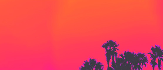Foto op Textielframe Palm boom Beautiful sunset of Los Angeles palm trees synth wave style
