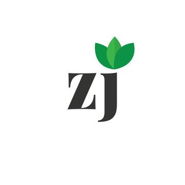 Initial Letter zj Green Leaf Logo Design Template. Green Design Logo Concept
