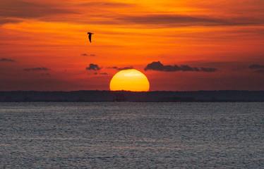 Foto op Aluminium Zee zonsondergang The rising sun has beautiful colors floating above the sea.