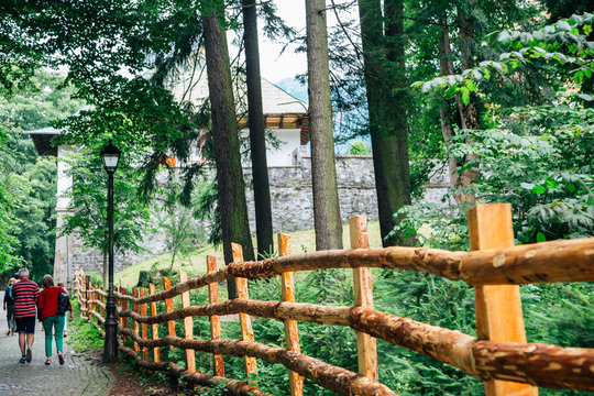 Sinaia hiking road with green forest in Romania