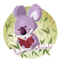 Koala reading a book sitting
