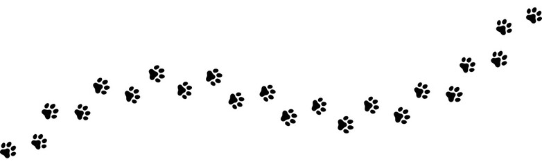 Seamless texture of a Paw print trail on white background. Vector cat or dog, pawprint walk line path pattern background