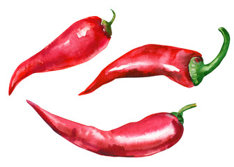 red chili pepper on isolated white background, watercolor illustration