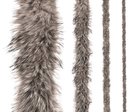 set of stripes of gray fur of different sizes on an isolated white background.