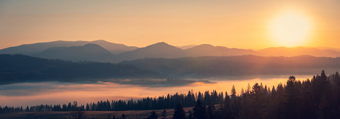Zelfklevend Fotobehang Ochtendgloren Majestic autumn scenery of foggy valley at Carpathian mountain range at early morning sunrise. Beautiful tonal perspective wide angle panorama.