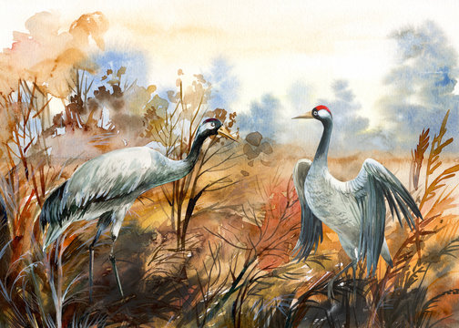 autumn landscape with birds  crane, watercolor illustration
