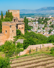 Panoramic sight with the Alhambra Palace and the Albaicin district in Granada. Andalusia, Spain.