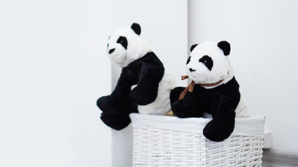 Two panda soft toys in a white wicker basket In the white room