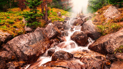 Gentle Stream In Autumn Forest With Sun Rays And Fall Colors