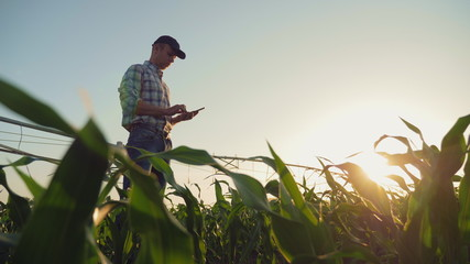 Young farmer working in a cornfield, inspecting and tuning irrigation center pivot sprinkler system on smartphone. Papier Peint