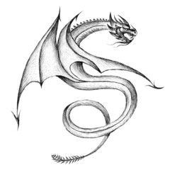 The Vector logo dragon or dinosaur  for T-shirt print  design or outwear.  Hunting style reptile background. This drawing would be nice to make on the black fabric or canvas.