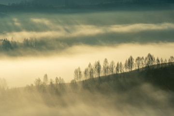 Poster Morning with fog Alpine sea in the mountains. Dumesti a village from Romania cover in fog.