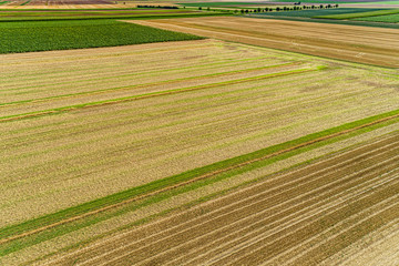 mowed agriculture field from above