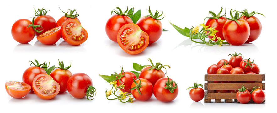 Set tomato in cut with green leaves and flowers. Collection vegetable still life for packing. Isolated on white background.