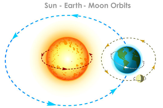 Orbits. Sun earth, moon orbits. Orbit movements with directions and angles. Elliptical arrows showing trajectory directions. Physics, astronomy illustration. White background. Vector graphic
