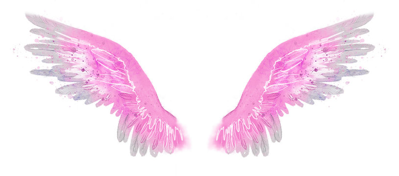 beautiful magic watercolor pink wings, freedom and hapiness