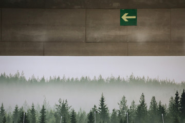 A nature wallpaper is seen displayed in a conference room at IFEMA convention center ahead of the 2019 U.N. Climate Change conference (COP25) in Madrid