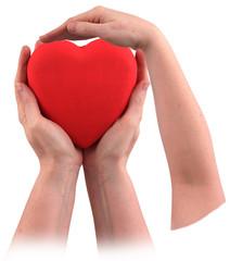 Papiers peints Rouge, noir, blanc Three hands carry a red heart