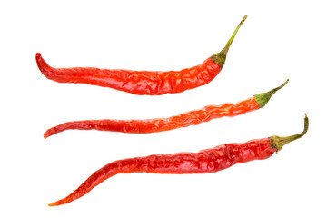 Aluminium Prints Hot chili peppers Red hot chili pepper isolated on a white background