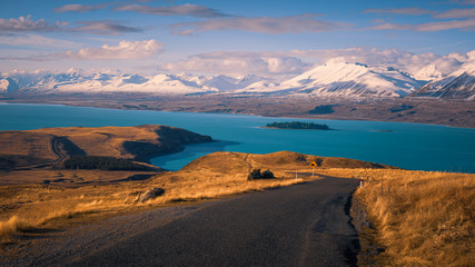 Lake Tekapo surrounded by tawny tussock and snowy peaks, South Island, New Zealand