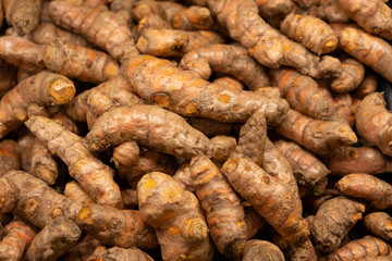 Pile of fresh turmeric roots view from top