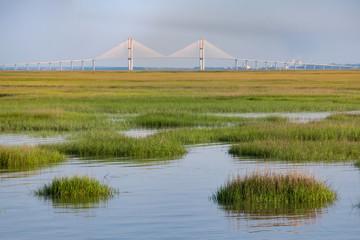 Fototapeta Sydney Lanier Bridge across the Marsh in Brunswick, GA obraz
