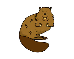 Detailed Beaver with Standing Gesture Illustration