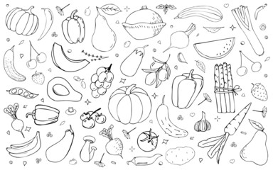 Vector  backdrop with vegetables, fruits and berries. Useful for packaging, menu design and interior decoration. Hand drawn doodles. Sketchy collection of elements.