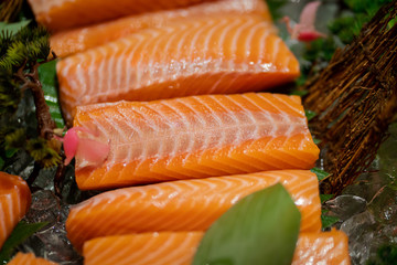 Very fresh raw salmon sashimi sliced are display on table. There are good piece of salmon due to orderly fatty layer in the bright orange meat. Food selective focus photo.