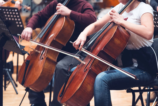 Musicians, orchestra and musical instruments