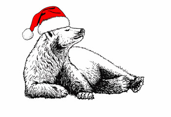 Graphical bear in Santa Claus hat isolated on white background,vector new year illustration