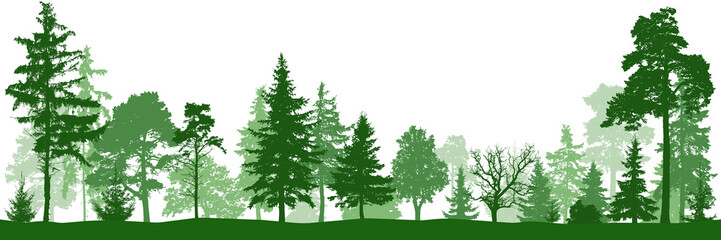 Forest park. Silhouette vector. Landscape of isolated trees