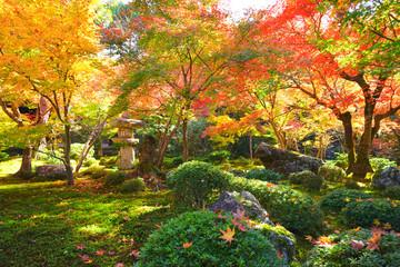 Japanese Garden in the Enkoji Temple, Kyoto City, Kyoto Pref., Japan
