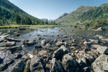 Wall Mural - Wild russian nature. Beautiful landscape with clear lake in the mountains. Traveling in the Altai Republic. Active tourism in Russia in the summer. Multa Lake.