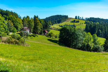 Summer mountain landscape with blue sky, Road through a meadow - Moravian-Silesian Beskydy, Grun, Czechia