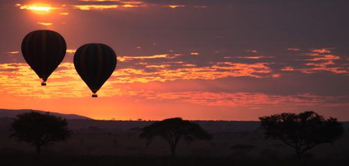 Dawn at Serengeti National Park, Tanzania, Africa Wall mural